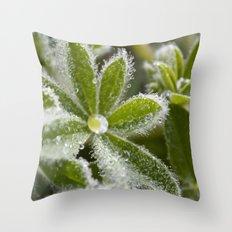 Morning Dew I Throw Pillow