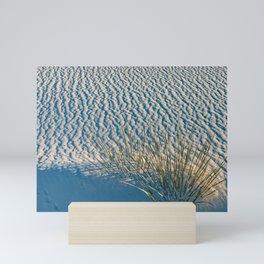 Yucca in White Sand Mini Art Print