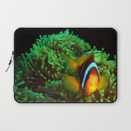 Anemone Fish in Green Anemone Laptop Sleeve
