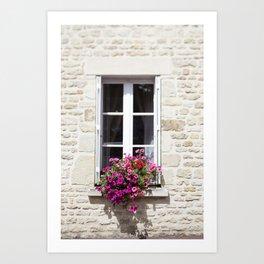 Window Flowers in France Art Print