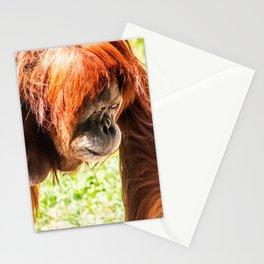 Orangutang Stationery Cards