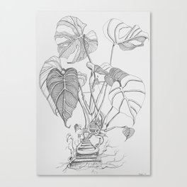 Monstera. Living Canvas Print