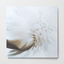 Feather in brown Metal Print