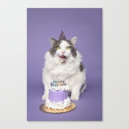 Happy Birthday Fat Cat In Party Hat With Cake Canvas Print