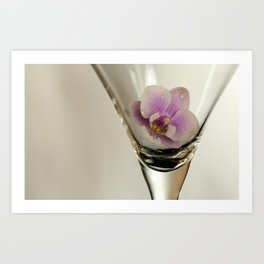 Orchid inside Martini Glass Art Print