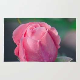 The rosebud Rug