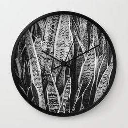 Plant Photography Tropical Exotic Plants Snake Plant Tongue Beauty Wild Nature Black and White Wall Clock