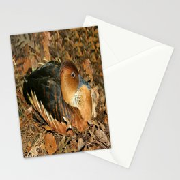 Fulvous Whistling Duck Stationery Cards