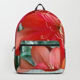 Flamingo Floaty Backpack