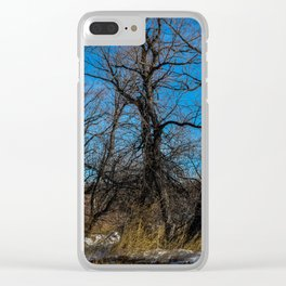 Wyoming Winter Trees Clear iPhone Case