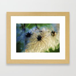 Angel Seeds Framed Art Print