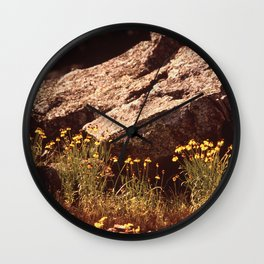 Central Texas - Near Lake Travis Wall Clock