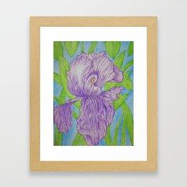 Lavender Iris Flower Framed Art Print