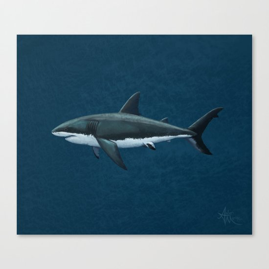 """Carcharodon carcharias"" by Amber Marine  ~ Great White Shark Art, (c) 2015 Canvas Print"