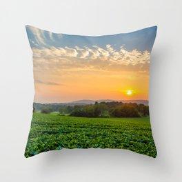Spring Grove Sunset Throw Pillow