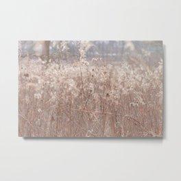 Autumn in the Prairie Metal Print