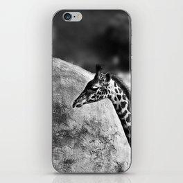 Whiteout - Giraffe iPhone Skin