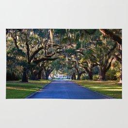 Avenue Of Live Oaks Rug