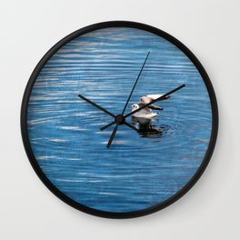 Winter gull on the water Wall Clock