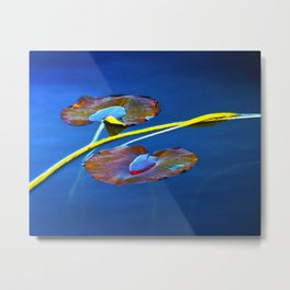 Lily Pads on Blue Water Metal Print