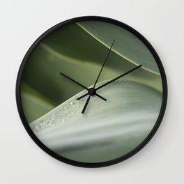 Agave study Wall Clock