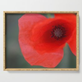 top poppy so red! Serving Tray