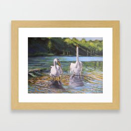 Swans of Wastwater Framed Art Print