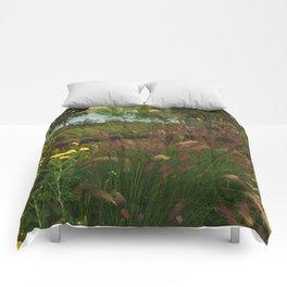 Lake Murray, La Mesa, California Comforters