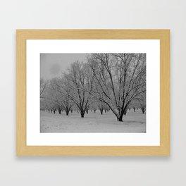 MS Snow Framed Art Print