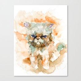 CAT#11 Canvas Print