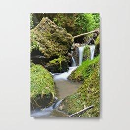 Mossy Glen Falls Metal Print