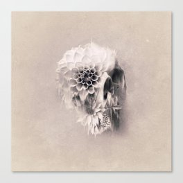 Decay Skull Light Canvas Print