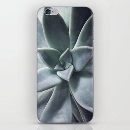 A Succulent Life iPhone Skin