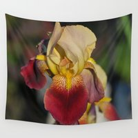 iris Wall Tapestries featuring Iris by Sarah Shanely Photography