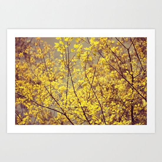 trees yellow leaves Art Print