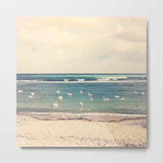 Swan Sea Metal Print