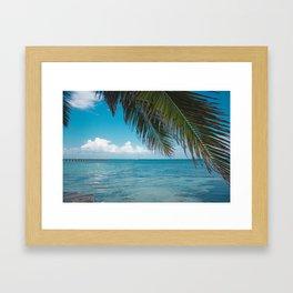 Palm Tree Life Framed Art Print