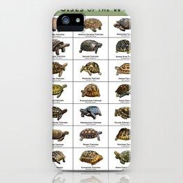 Tortoises of the World iPhone Case