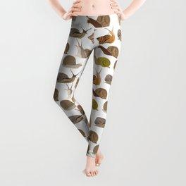 Snails Leggings
