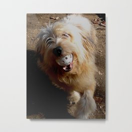 See, I won't choke on it! Metal Print