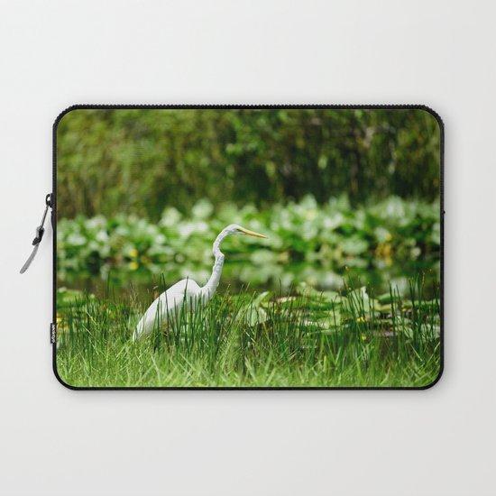 Great Egret in a Green Field by ane4ka