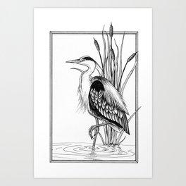 Great Blue Heron & cattail ink illustration Art Print