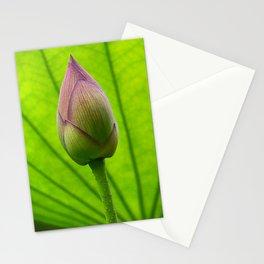 Sacred Lotus Bud Stationery Cards