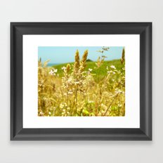 Fort Brag Seaglass Beach III Framed Art Print