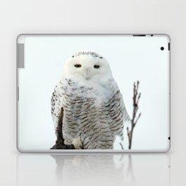 Snowy in the Wind (Snowy Owl 2) Laptop & iPad Skin