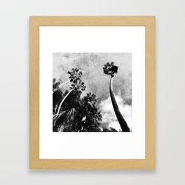 While waiting for the dinosaurs to appear Framed Art Print