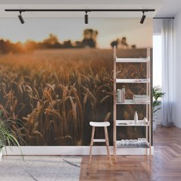 Wheat Wall Mural
