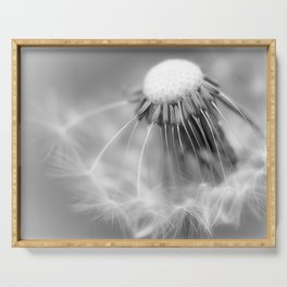 Dandelion Whispers Serving Tray