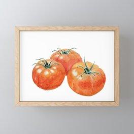 Three Tomatoes Framed Mini Art Print