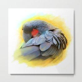 Black Palm Cockatoo realistic painting Metal Print
